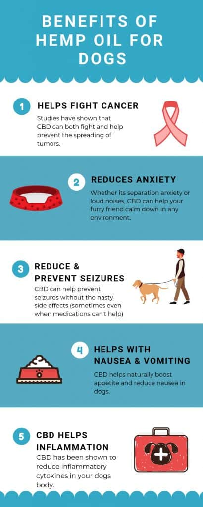 benefits of cbd hemp oil for dogs infographic