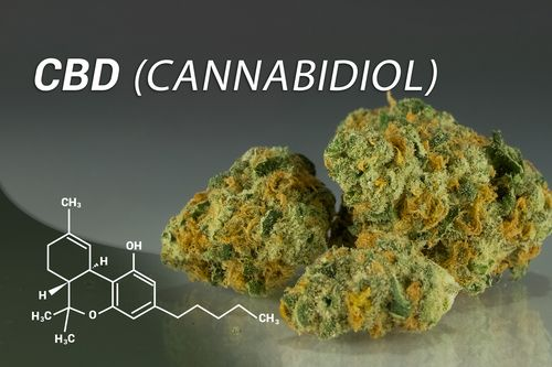 cbd cannabidol image
